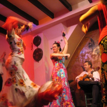Flamenco Akademija
