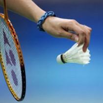 Panevėžio Badmintono Klubas